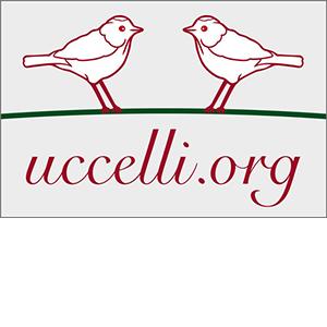 WiesnStylingLounge_Oktoberfest_Uccelli_logo